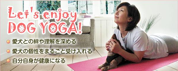Let's enjoy <br />DOG YOGA! 愛犬との絆や理解を深める、愛犬の個性をまるごと受け入れる、自分自身が健康になる
